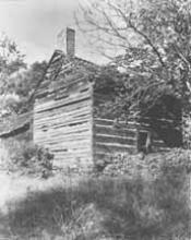 The McIntyre Cabin