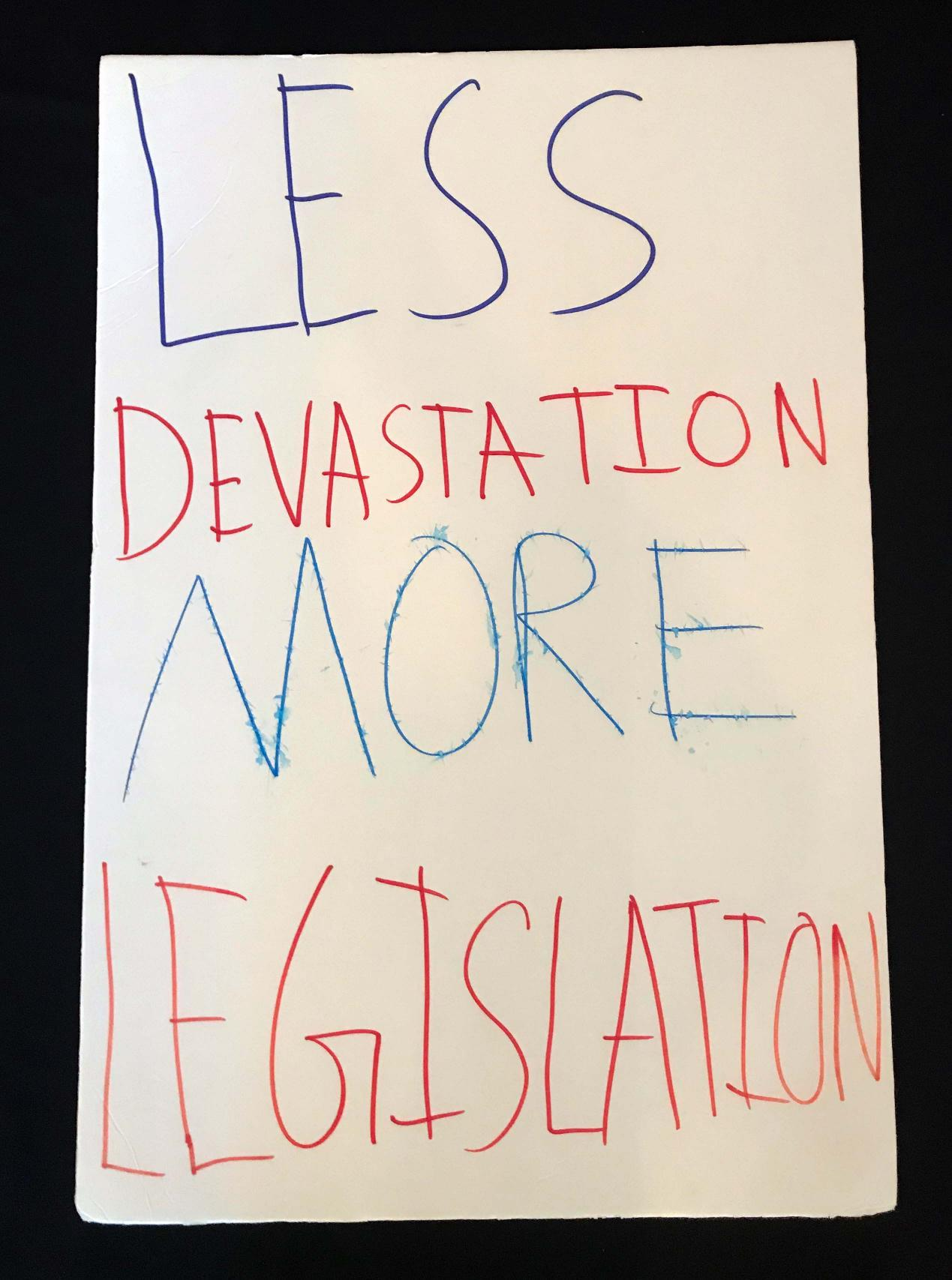 "Charlotte March for Our Lives, 2018. Sign reads: ""Less devastation, more legislation"""