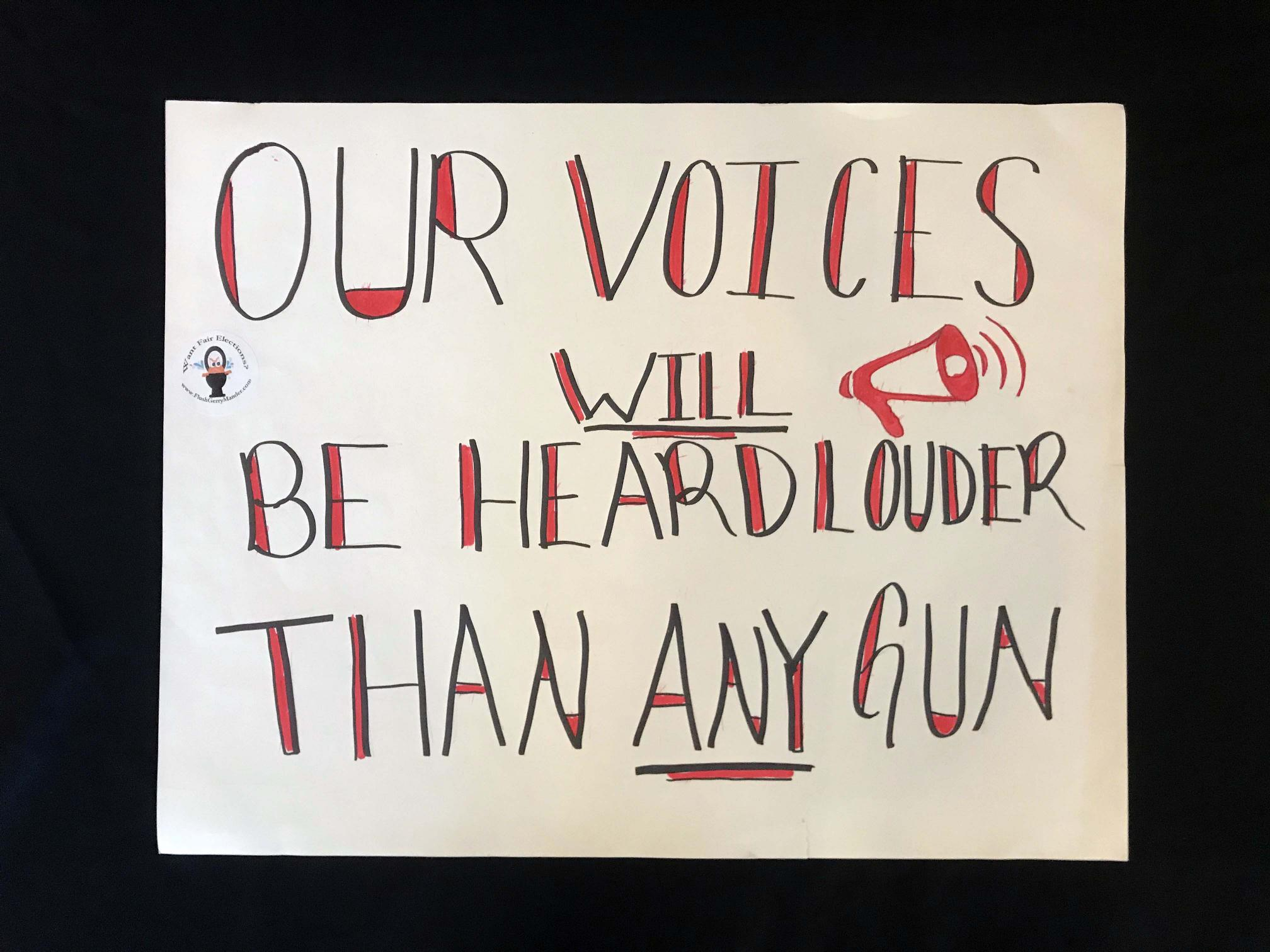 "Charlotte March for Our Lives, 2018. Sign reads: ""Our voices will be heard louder than any gun."""