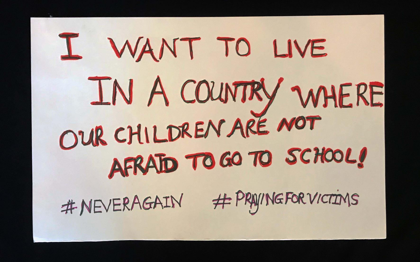 "Charlotte March for Our Lives, 2018. Sign reads: ""I want to live in a country where our children are not afraid to go to school. #neveragain #prayingforvictims"""
